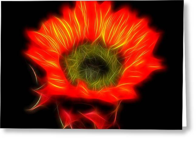 Glowing Sunflower Greeting Card by Judy Vincent
