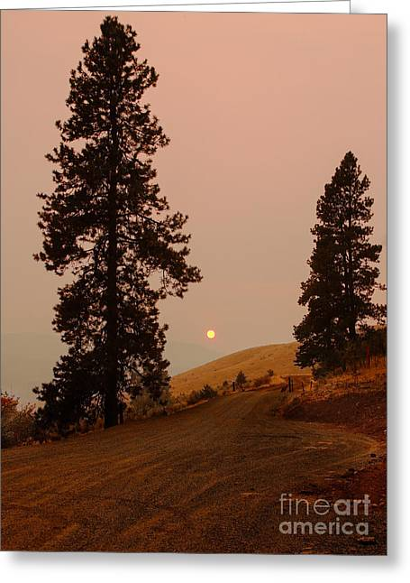 Landsacape Greeting Cards - Glowing sunset Greeting Card by Robert Bales