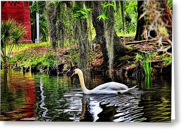 The Trees Greeting Cards - Glowing Swan Greeting Card by Judy Vincent