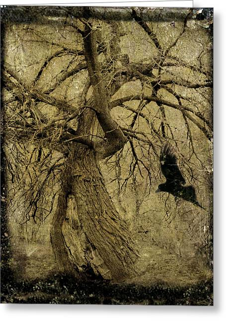 Passerine Greeting Cards - Gnarled and Twisted Tree with Crow Greeting Card by Gothicolors Donna Snyder