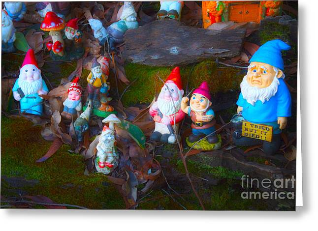 Elvin Greeting Cards - Gnomes on the Range Greeting Card by Cassandra Buckley