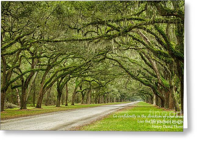 Old Savannah With Moss Greeting Cards - Go Confidently in the Direction of Your Dreams Endless Oaks Inspirational Art Greeting Card by Dawna  Moore Photography