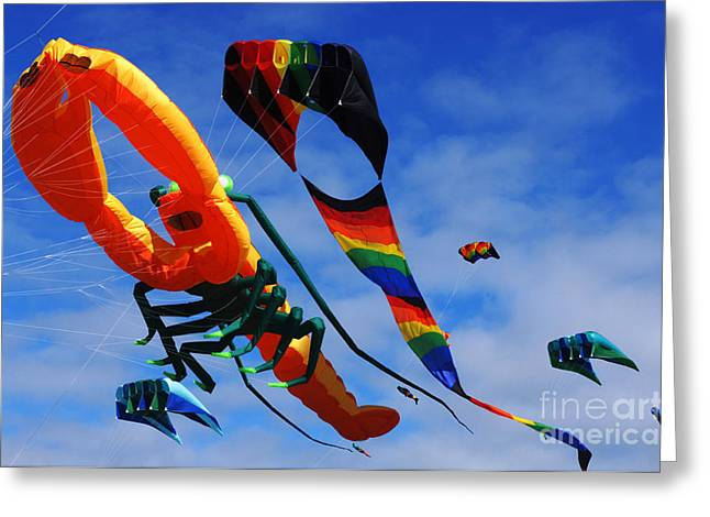 Kites Festival Greeting Cards - Go Fly A Kite 3 Greeting Card by Bob Christopher