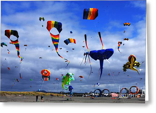 Kites Festival Greeting Cards - Go Fly A Kite 4 Greeting Card by Bob Christopher