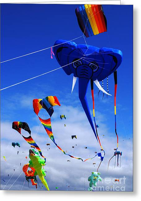 Kites Festival Greeting Cards - Go Fly A Kite 5 Greeting Card by Bob Christopher