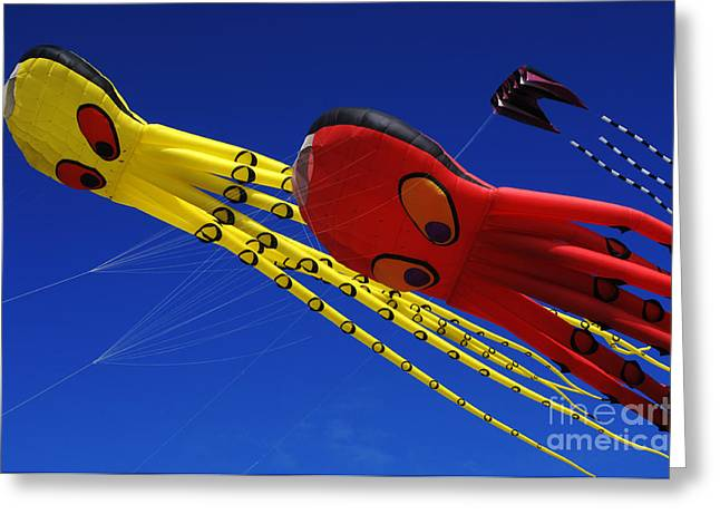 Kites Festival Greeting Cards - Go Fly A Kite 6 Greeting Card by Bob Christopher