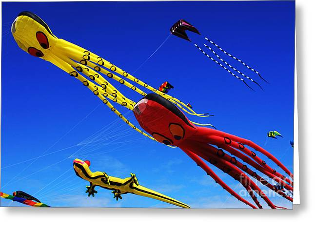 Kites Festival Greeting Cards - Go Fly A Kite 7 Greeting Card by Bob Christopher