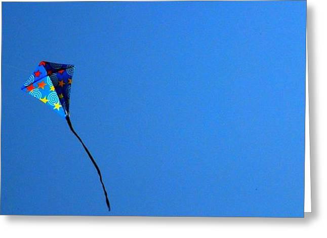 Kite Greeting Cards - Go Fly A Kite Greeting Card by Linda Covino