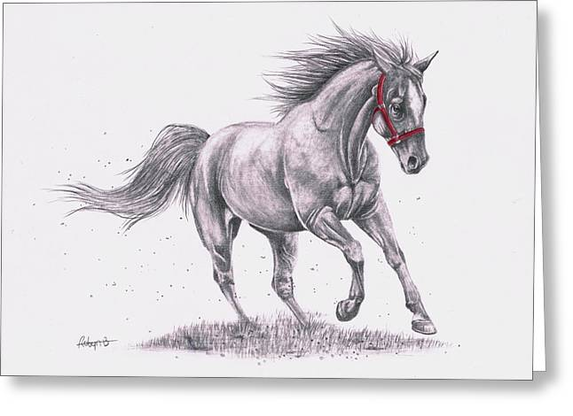 Forelock Drawings Greeting Cards - Go For A Run Greeting Card by Robyn Green