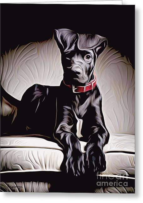Retriever Prints Digital Art Greeting Cards - Go for a walk? Greeting Card by Larry Espinoza