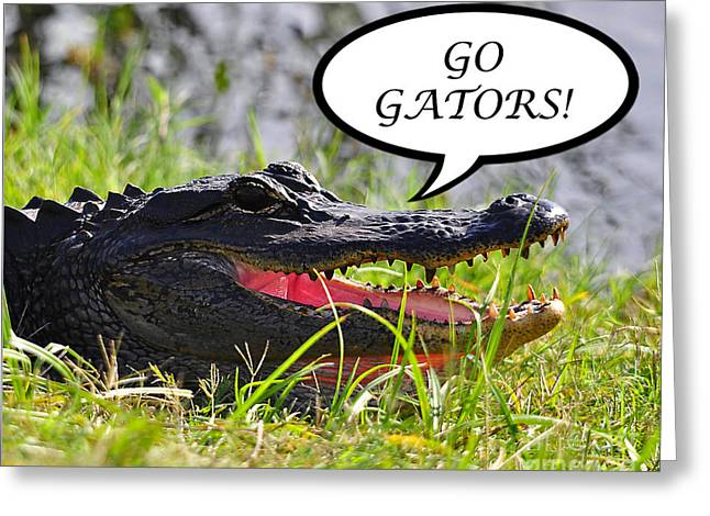 Go Gators Greeting Card Greeting Card by Al Powell Photography USA