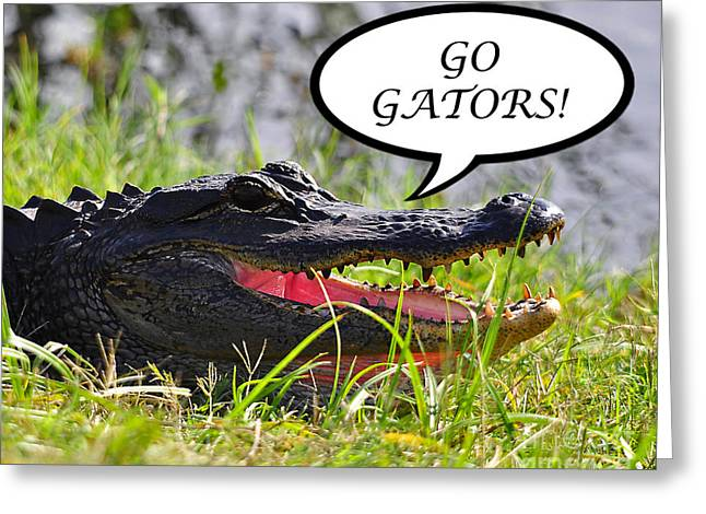 Florida Gators Greeting Cards - GO GATORS Greeting Card Greeting Card by Al Powell Photography USA