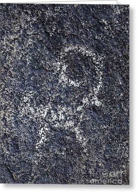 Central Asia Greeting Cards - Goat petroglyph engraved on boulders at Cholpon Ata in Kyrgyzstan Greeting Card by Robert Preston
