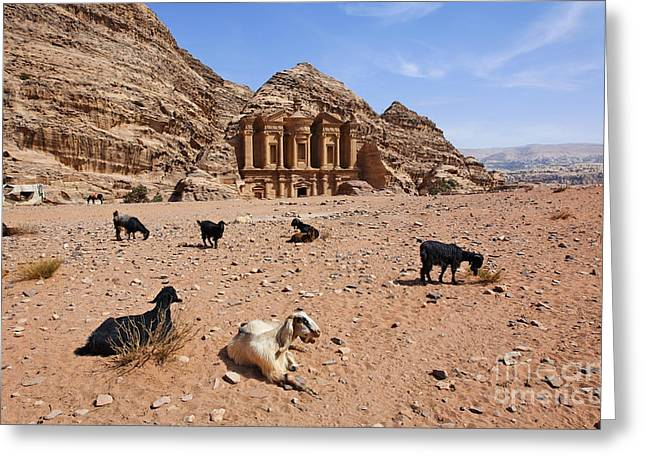 Petra - Jordan Greeting Cards - Goats in front of the Monastery at Petra in Jordan Greeting Card by Robert Preston