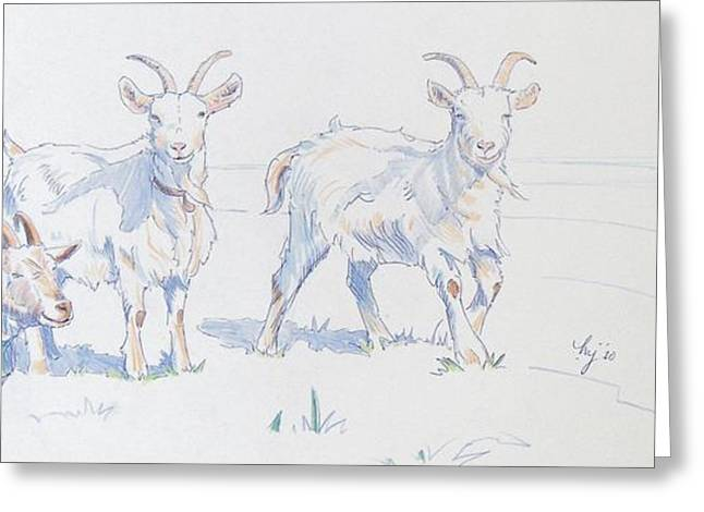 Crisp Drawings Greeting Cards - Goats Greeting Card by Mike Jory