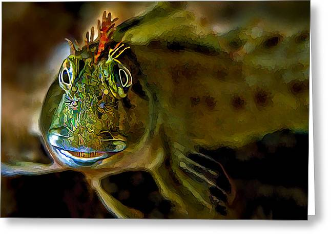 Sea Of Cortez Greeting Cards - Goby Face Greeting Card by Bill Caldwell -        ABeautifulSky Photography