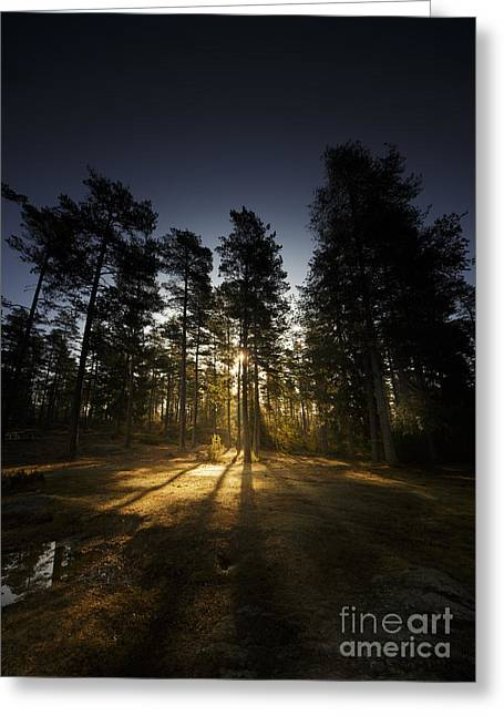 Beautiful Scenery Greeting Cards - God Im tiny Greeting Card by Happy Melvin
