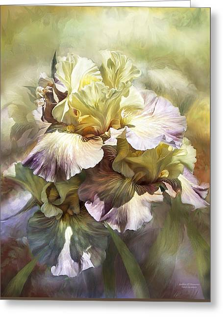 Yellow Bearded Iris Greeting Cards - Goddess Of Memories Greeting Card by Carol Cavalaris
