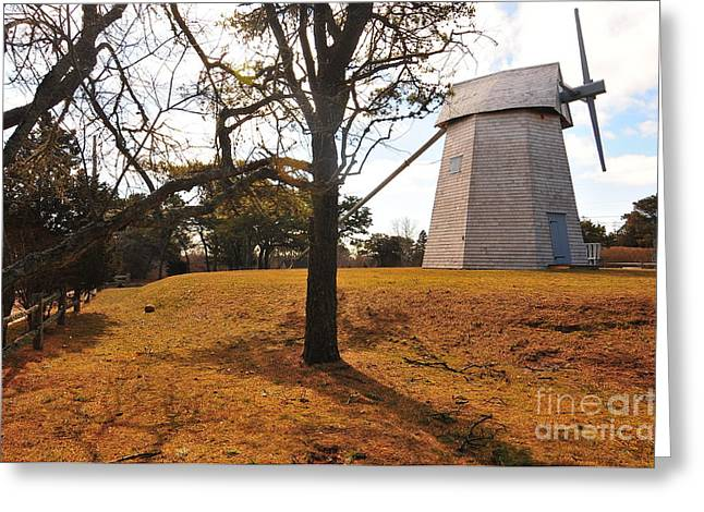 Chatham Greeting Cards - Godfrey Windmill Greeting Card by Catherine Reusch  Daley