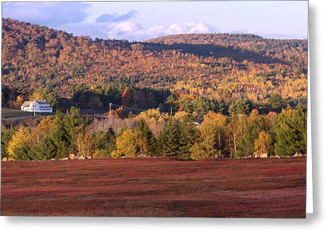 Maine Landscape Greeting Cards - Gods Country Greeting Card by Patrick Downey