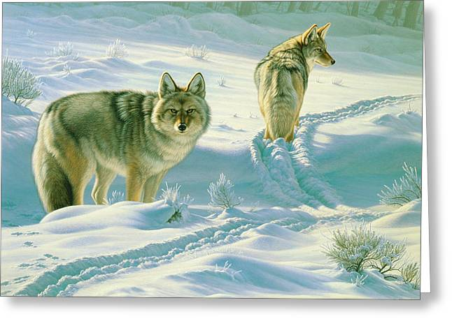 Coyote Greeting Cards - Gods Dogs Greeting Card by Paul Krapf