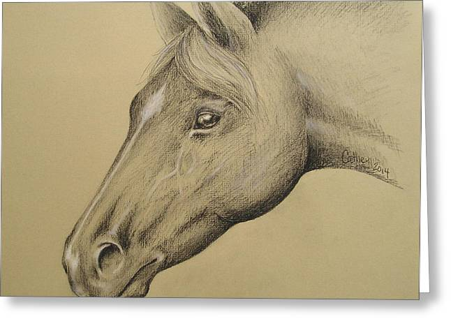 Forelock Drawings Greeting Cards - Gods Gift To Humanity Greeting Card by Catherine Howley