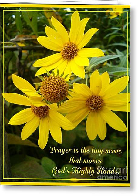 Thimbleweed Greeting Cards - Gods Mighty Hands Greeting Card by Sara  Raber