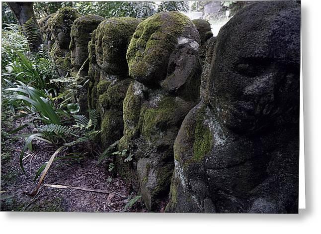 Arashiyama Greeting Cards - GODS of the FOREST Greeting Card by Daniel Hagerman