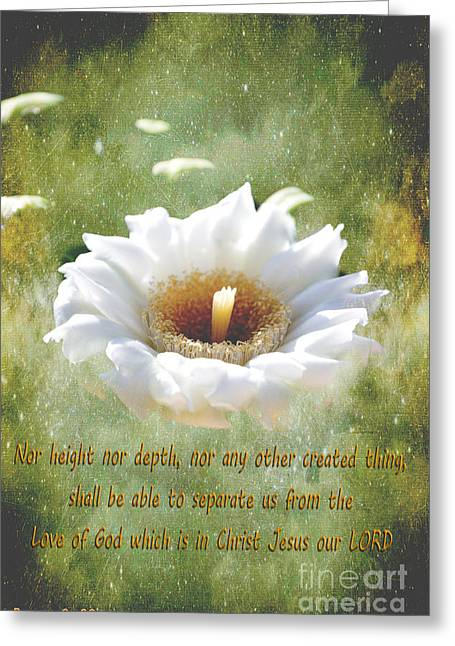 Gods Promises Greeting Cards - Gods Promise Greeting Card by Beverly Guilliams