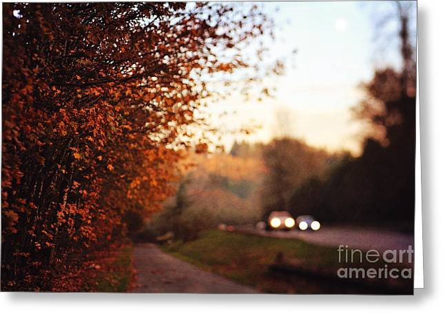 Fall Dusk Greeting Cards - Going Home Greeting Card by Sylvia Cook