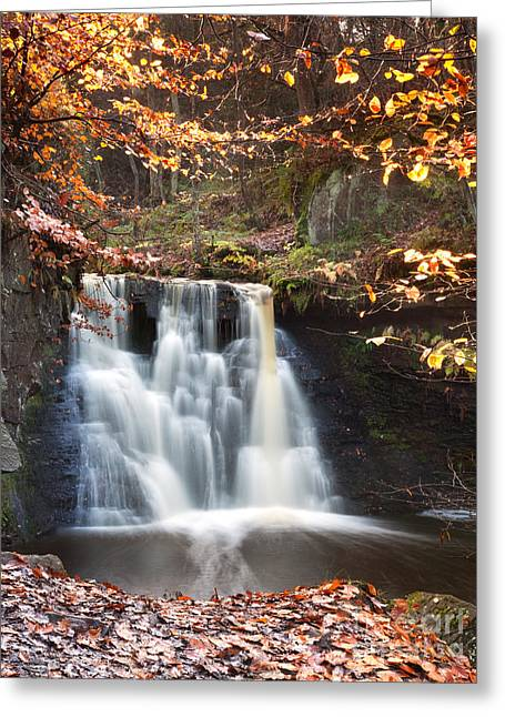 West Yorkshire Greeting Cards - Goit Stock Waterfall Bingley West Yorkshire Greeting Card by John Potter