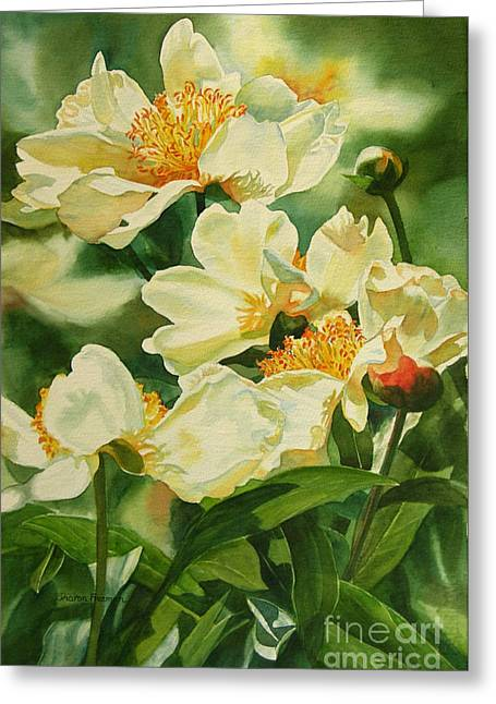 Golds Greeting Cards - Gold and White Peonies Greeting Card by Sharon Freeman