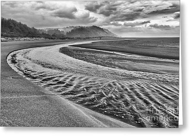 Foggy Beach Greeting Cards - Gold Bluffs Beach is located in the Prairie Creek Redwoods State in Black and White. Greeting Card by Jamie Pham