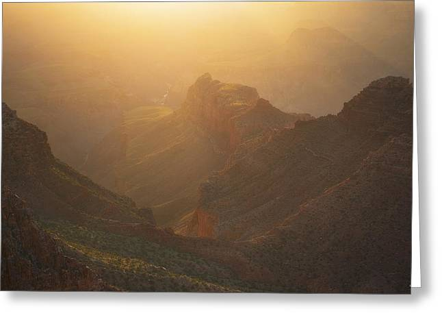 Gold Canyon Greeting Card by Peter Coskun