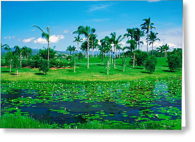 Gold Coast Greeting Cards - Gold Coast Nsw Australia Greeting Card by Panoramic Images