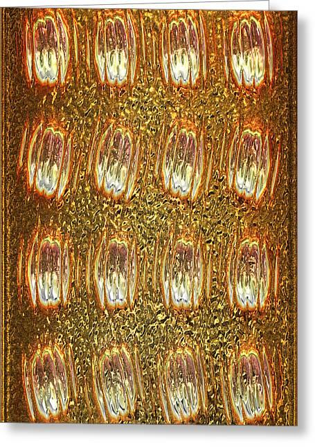 Gold Panel 05 Greeting Card by Li   van Saathoff