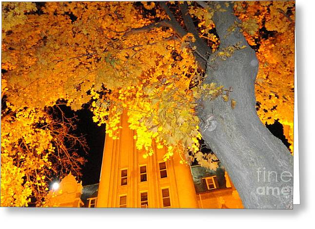 Next To Tree Greeting Cards - Gold tree Greeting Card by Laith Mhsen