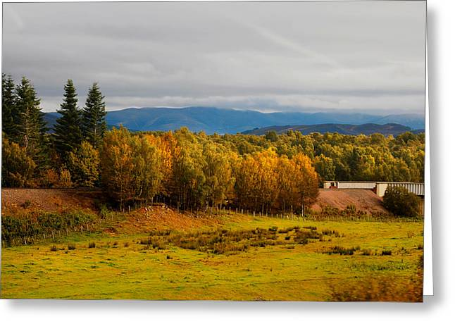 Highlands Of Scotland Greeting Cards - Golden Autumn in Scotland Greeting Card by Jenny Rainbow