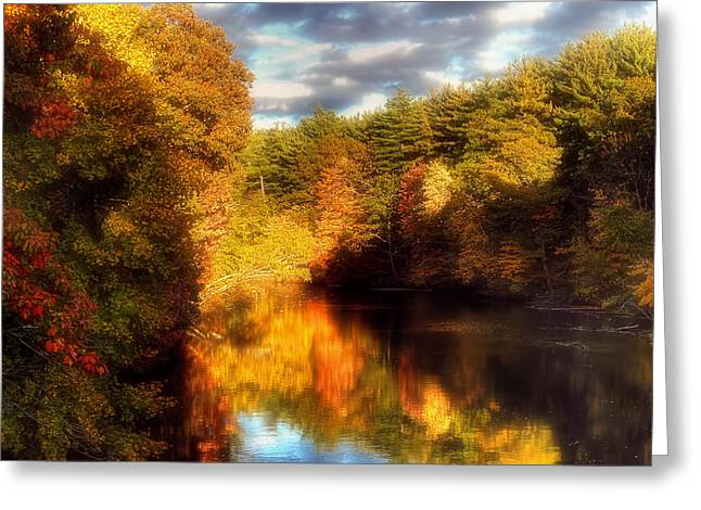 Reflecting Buildings Greeting Cards - Golden Autumn Greeting Card by Joann Vitali