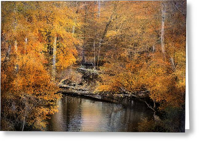 Beautiful Creek Greeting Cards - Golden Blessings Greeting Card by Jai Johnson
