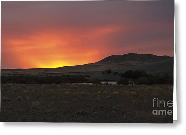 Idaho Photography Greeting Cards - Golden Bruneau Dune Greeting Card by Robert Bales
