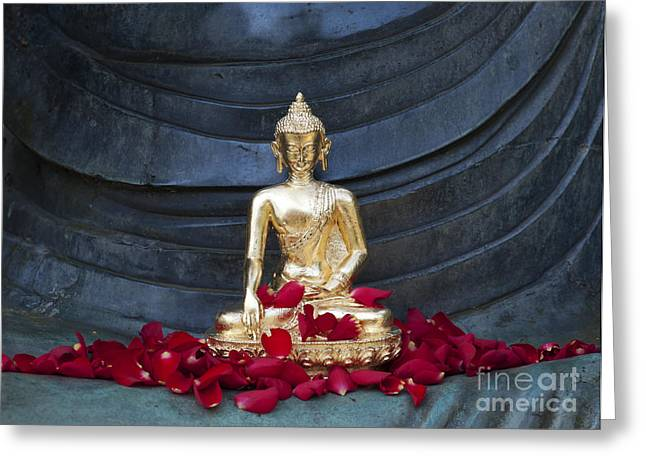 Rose Petals Greeting Cards - Golden Buddha Greeting Card by Tim Gainey