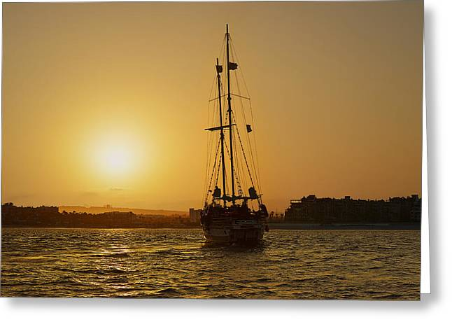 Sail Greeting Cards - Golden Cabo Sunset Greeting Card by Christine Till