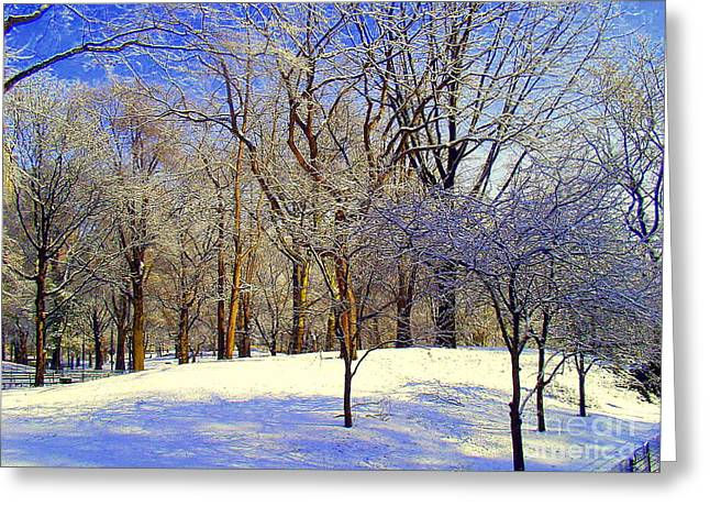 Most Favorite Photographs Greeting Cards - Golden Central Park Greeting Card by Noa Yerushalmi