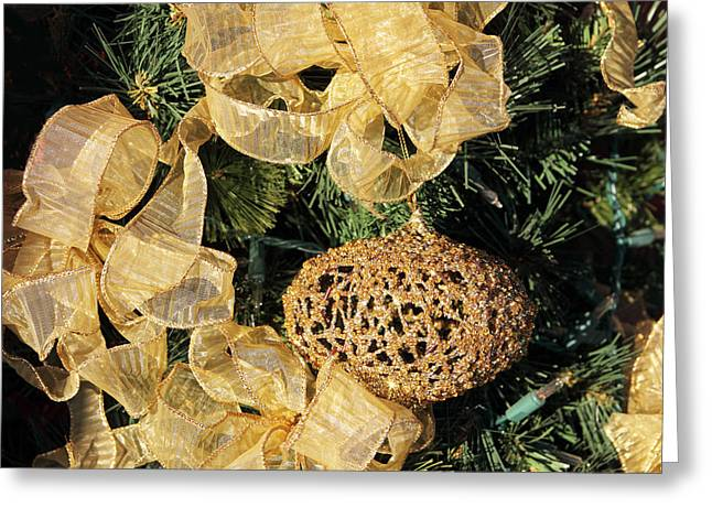 Pine Needles Greeting Cards - Golden Christmas Greeting Card by Linda Phelps