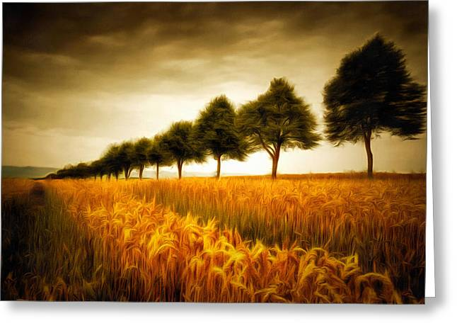 Cornfield Digital Art Greeting Cards - Golden cornfield with row of trees painting Greeting Card by Matthias Hauser