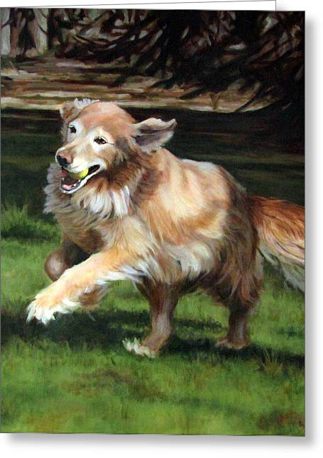Dog With Tennis Ball Greeting Cards - Golden Days Greeting Card by Sandra Chase