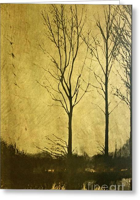 Photos Of Autumn Mixed Media Greeting Cards - Golden Greeting Card by Deborah Talbot - Kostisin