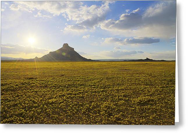 Sun Ray Greeting Cards - Golden Desert Greeting Card by Chad Dutson