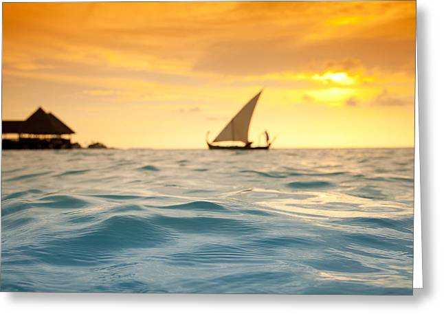 Ocean Sailing Greeting Cards - Golden Dhoni Sunset Greeting Card by Sean Davey